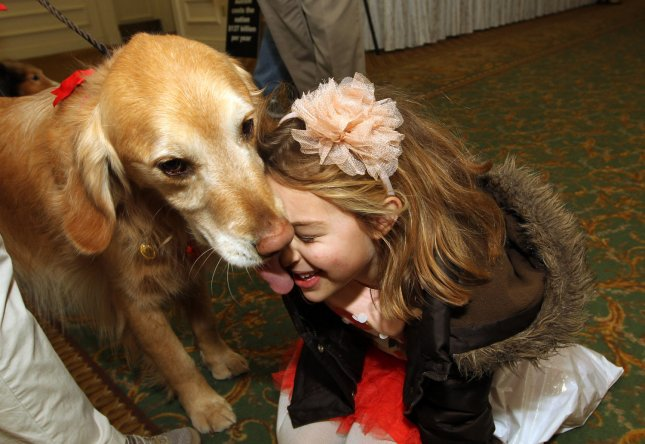 Autism begins during pregnancy.  Olivia Kelly (6) takes a kiss from Buck the therapy dog at the Life Skills/Touch Point Autism Services Milk and Cookies with Santa event in Maryland Heights, Missouri. UPI/Bill Greenblatt