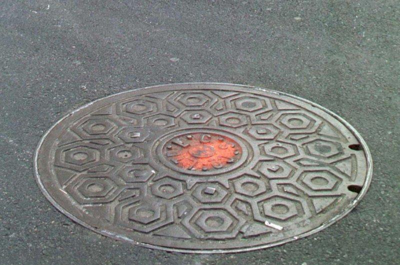 A manhole cover (File/UPI/Ezio Petersen)