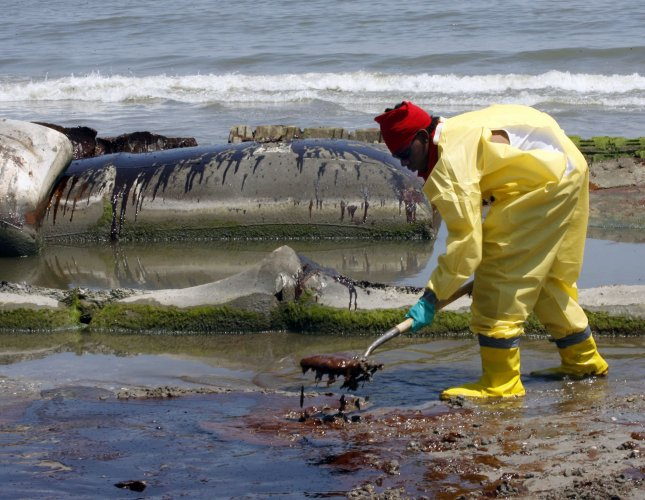 BP workers use shovels to clean oil from a beach at Port Fourchon, Louisiana, May 24, 2010. Oil has been washing ashore on the coast of Louisiana for the past several days as a result of the BP Deepwater Horizon oil rig explosion April 20. UPI/A.J. Sisco