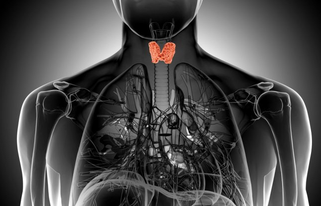 While surgery to remove the thyroid is a relatively safe procedure, researchers say side effects from the procedure can land some back in the hospital. Photo by goanovi/Shutterstock