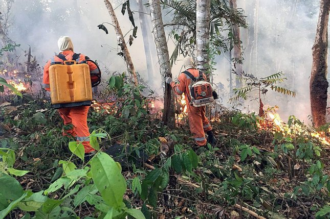 Firefighters work to extinguish flames in the Amazon rain forest in Rondonia State, Brazil, on August 18. File Photo courtesy Porto Velho firefighters/EPA-EFE