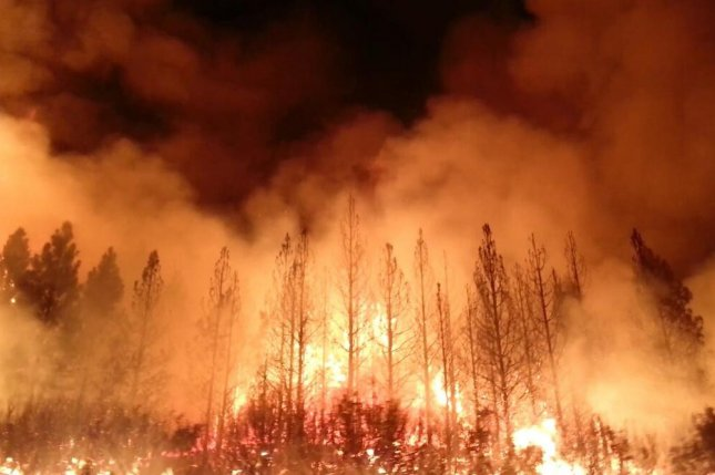 Started on August 17, 2013, the fast-moving Rim fire charred 400 square miles in and around Yosemite National Park. A deer hunter has been charged with starting it accidentally with an illegal campfire. (UPI/NASA Visible Earth)