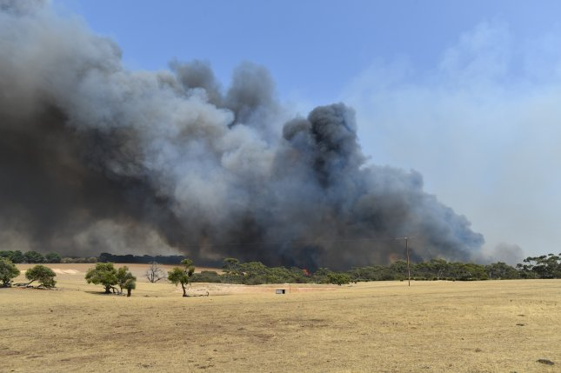 A wildfire burns in Stokes Bay on Kangaroo Island, Australia, on January 9. Photo by David Mariuz/EPA-EFE