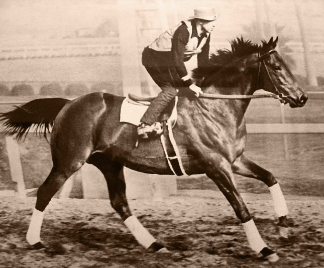 Seabiscuit, ridden by George Woolf, beat War Admiral on November 1, 1938. File Photo courtesy Seabiscuit Heritage Foundation