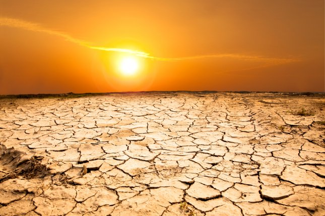 New research suggests the addition of amorophous silica can increase the soil's water storage abilities, helping plants survive prolonged drought conditions. Photo by Tom Wang/Shutterstock