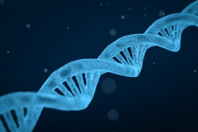 A new version of the CRISPR-Cas9 gene editing technique, called CRISPRoff, causes fewer incorrect edits -- and can be reversed -- according to researchers. Photo by qimono/Pixabay
