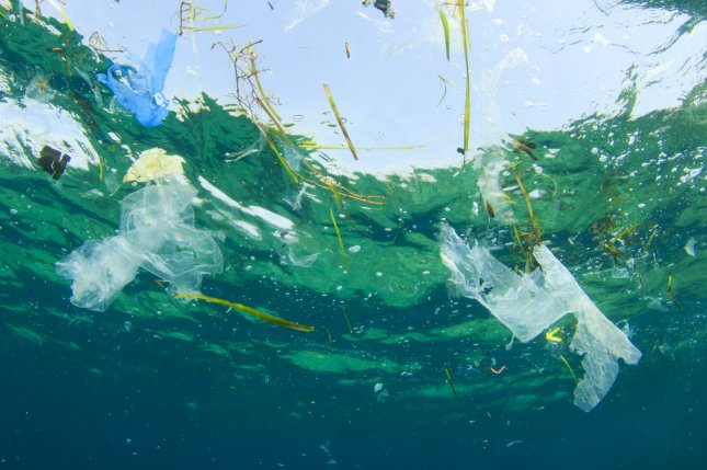 Plastic pollution in the ocean. Photo by Rich Carey/Shutterstock