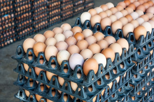 The Food and Drug Administration is temporarily allowing eggs packaged for food service to be sold in grocery stores. File Photo by ComZeal/Shutterstock