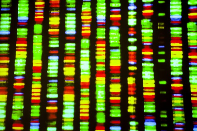 Researchers used a gene-editing strategy in DNA to eliminate HIV-1 infection in animal studies. Photo by Gio.tto/Shutterstock