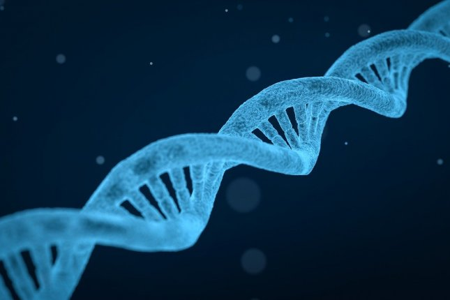 Scientists have discovered a protein that locates and facilitates the repair of damaged DNA. Photo by qimono/Pixabay