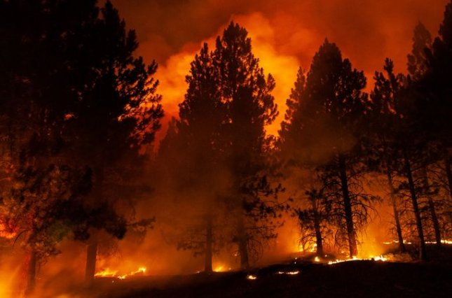 The Bootleg Fire, pictured, grew by more than 20,000 acres from Monday to early Tuesday and is now at about 537 square miles, officials said.Photo courtesy Lake County Sheriff's Office/Facebook