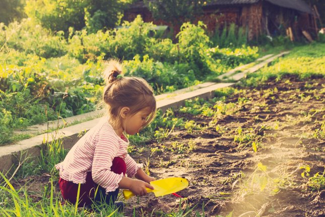 Exposure to greenness or green spaces has been linked to a variety of mental, emotional and health benefits. Now, a new study suggests exposure to green space is linked with improved learning among young children. Photo by Katya Shut/Shutterstock