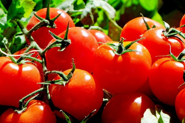 Florida's tomato and produce farmers face brutal competition from subsidized Mexican imports, to the point that the industry could collapse if the U.S. government doesn't act quickly, farmers and congressmen said at an online hearing Thursday. File Photo courtesy Pixabay