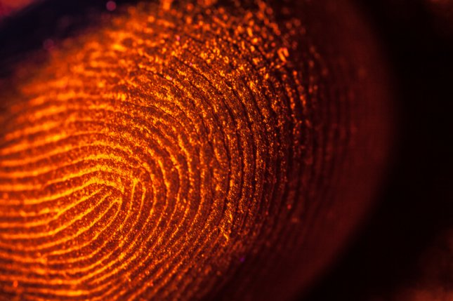 Fingerprints can reveal a person's ancestral background. Photo by Roman Seliutin/Shutterstock