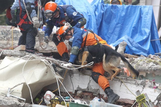 Dog rescued from Mexico natural disaster  rubble six days on
