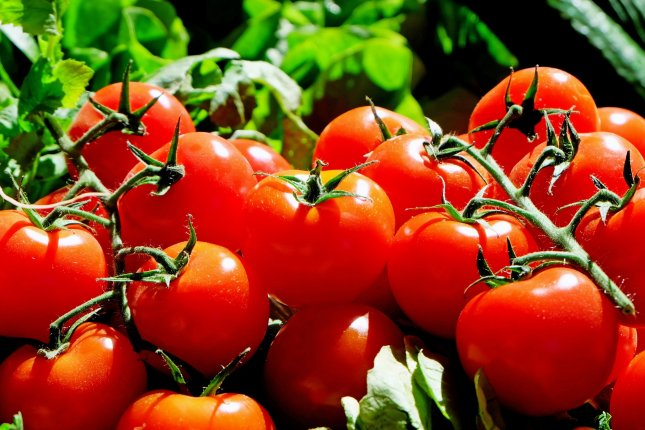 Grocery stores stock so many Mexican tomatoes that the only way to buy a Florida-grown tomato is to make a conscious effort to do so. File Photo courtesy of Pixabay