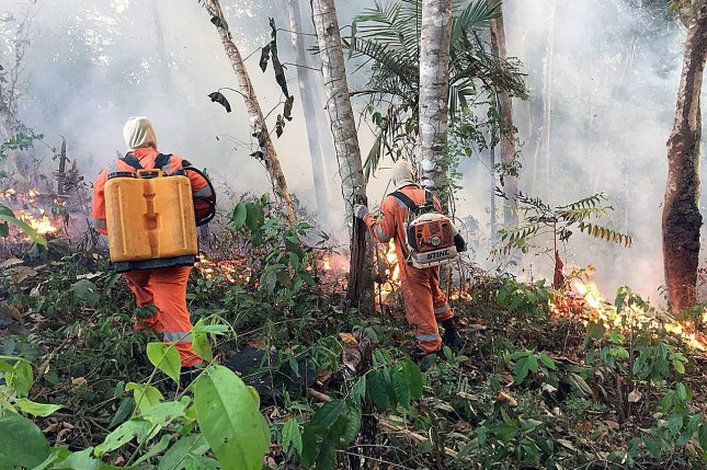 Porto Velho firefighters battle a fire in the Amazon in the state of Rondonia Brazil on Sunday