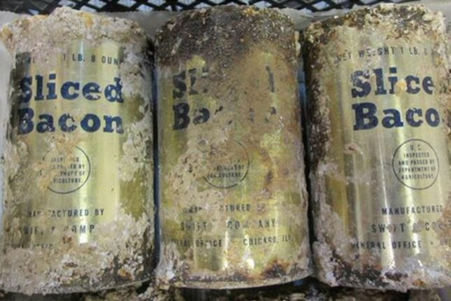 Archeologists say they have found U.S. Army bacon and sunscreen in tins buried at England's Salisbury Plain, home to the ancient ruins of Stonehenge. Wessex Archeology says several remnants of a World War II mess facility have been unearthed there in recent years. Photo by Wessex Archeology