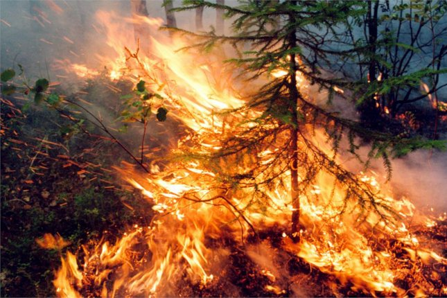 Photo of a wildfire burning in a boreal forest in the Krasnoyarsk region of Russia, Aug. 1, 2019. The Arctic Circle is experiencing a prolonged heatwave, fueling new wildfires in Siberia and other regions of the Arctic Circle this year, according to the World Meteorological Organization. Photo by the Russian Federation Service Aviation Forest Protection/EPA-EFE