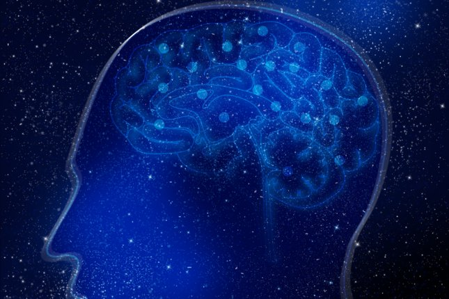 Researchers at Lund University in Sweden have found that retroviruses play an important role in human brain development. Photo by Tharun 15/Shutterstock