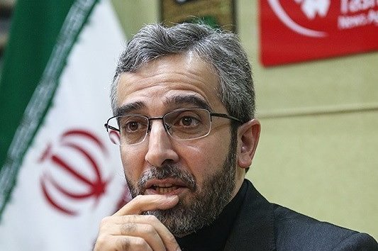 Ali Bagheri-Kani, secretary-general of the Iranian Judiciary's High Council on Human Rights, boasted that the Islamic Republic's rights achievements were based on the regime's religious lifestyle. Photo courtesy of Tasnim News Agency/Wikimedia