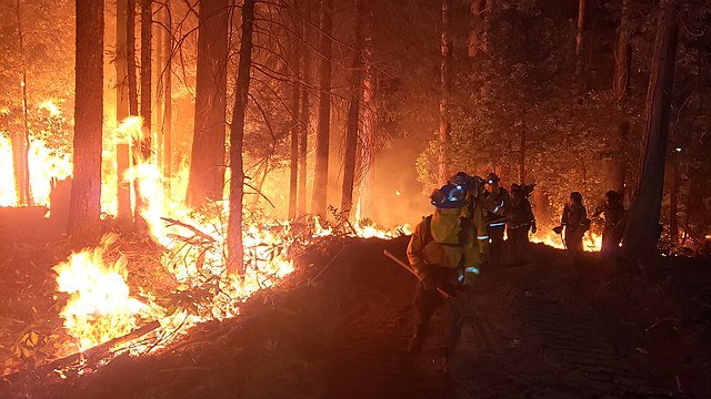 The Shasta County district attorney announced criminal charges against Pacific Gas & Electric Friday related to the Zogg Fire (shown) in Northern California. Photo courtesy of ccc.ca.gov/Wikimedia Commons