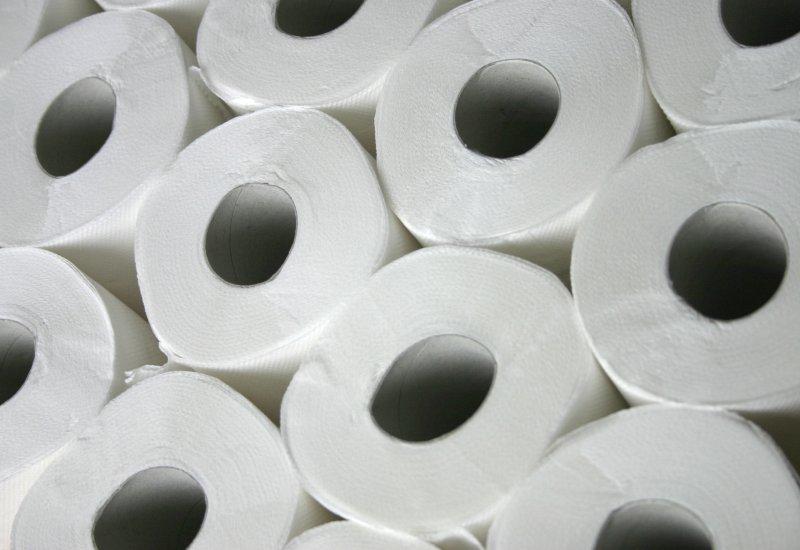 Rolls of toilet paper. Photo by Pixinstock/Shutterstock.com