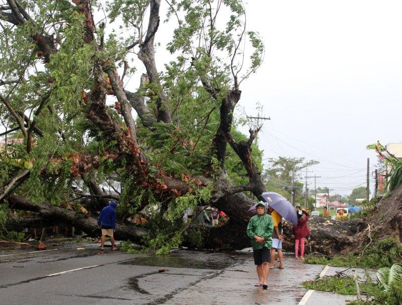Villagers walk next to a fallen tree in Naga City, Camarines Sur province, Philippines, Tuesday. Photo by Jonnel Maribojoc/EPA-EFE
