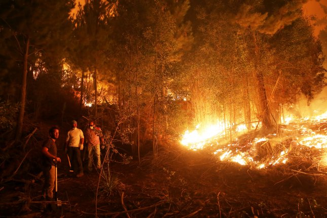 Homes evacuated in Chile amid battle to control wildfires