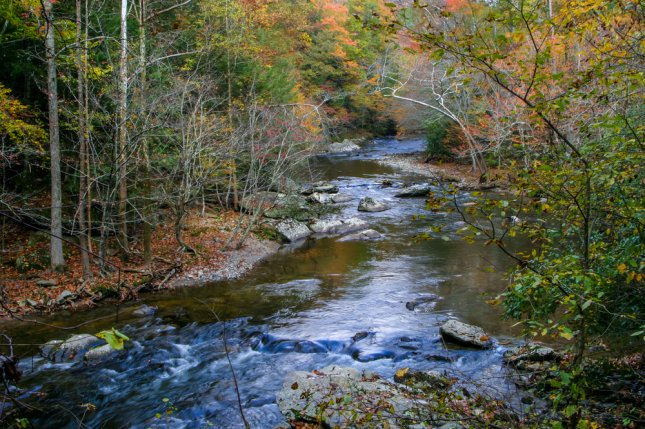 Researchers think that, if someone dies in the forest, the effect of chemicals from their decomposing body on surrounding plants could help search teams locate them. Pictured, a stream in Great Smoky Mountains National Park in Tennessee. File Photo by Doug Lemke/Shutterstock