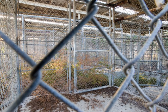 Empty detention cells in the abandoned Camp X-Ray at the Guantanamo Bay Naval Base, as pictured in July. The U.S. government announced a deal Saturday that nine Yemeni detainees at the military prison will be transferred to Saudi Arabia. File Photo by Ezra Kaplan/UPI