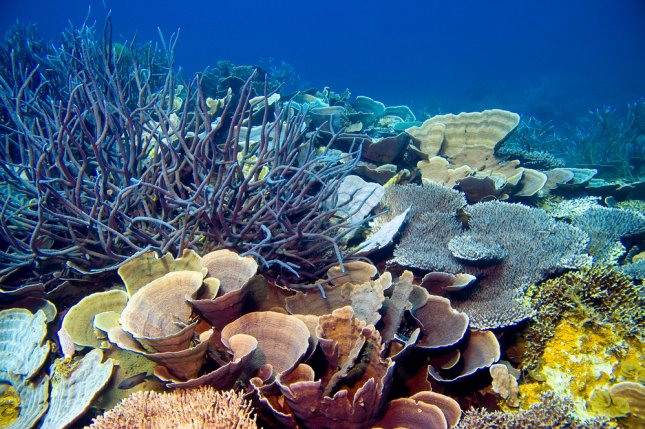 The Great Barrier Reef is composed of almost 3,000 individual reefs and 900 islands that span about 1,400 miles over 215,000 square miles in the Coral Sea off the coast of Queensland, Australia. File Photo by Wagsy/Shutterstock/UPI
