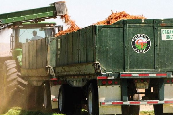 Grimmway Farms in California harvests organic carrots this spring. Photo courtesy of Cal-Organic/Grimmway Farms