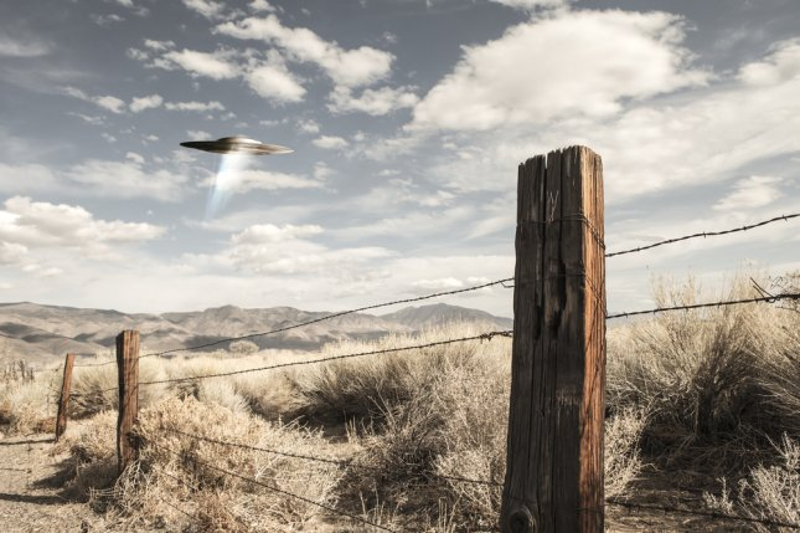 M. Cornelius/Shutterstock
