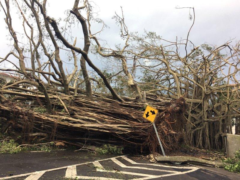 Damage from Hurricane Maria is seen in San Juan town, Puerto Rico, on Thursday. Photo by Jorge Muniz/EPA-EFE