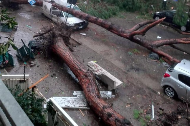 A view of fallen trees and damage left at a street after strong winds hit Terracina, Italy, Monday. Photo by EPA-EFE