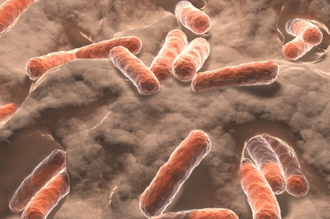 Good gut bacteria may augment cancer treatment, study finds. File photo by Juan Gaertner/Shutterstock