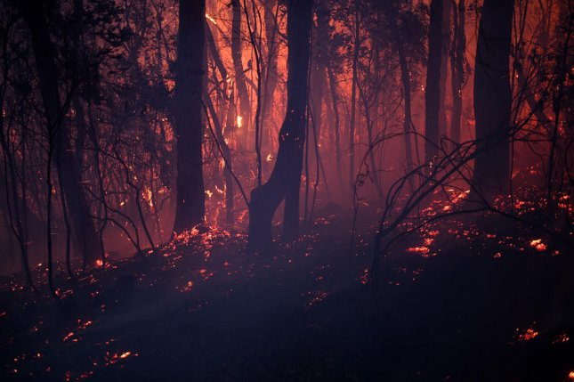 A bushfire burns close to homes on Railway Parade in Woodford, New South Wales, Australia, on November 8, 2019. Photo by Dan Himbrechts/Australia and New Zealand Out/EPA-EFE