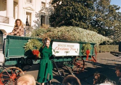 Nancy Reagan Receives White House Christmas Tree