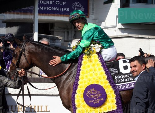 Breeders' Cup Championships in Louisville, Kentucky