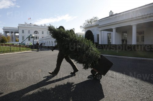 Christmas decorations are installed at the White House in Washington
